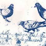 duiven ruiven blauwdruk