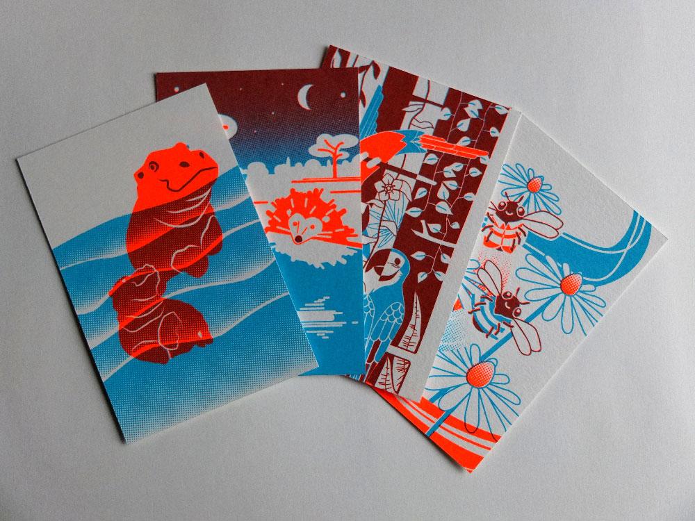 zeefdruk postkaarten dieren set